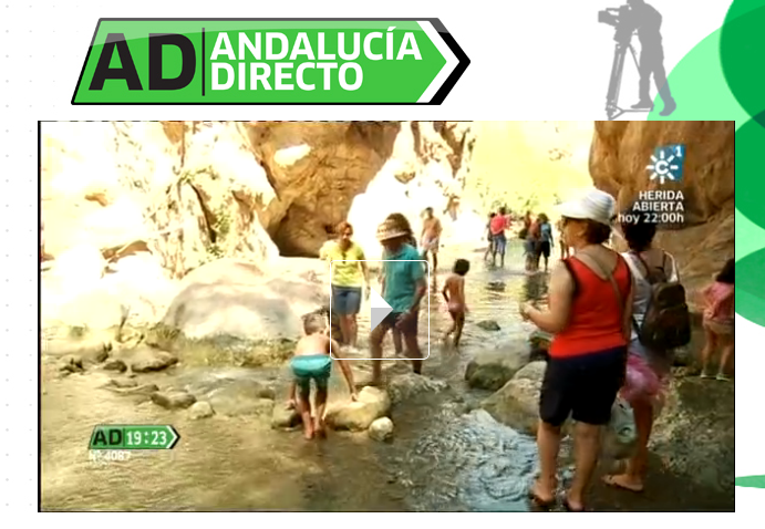 Andalucia Directo Padules